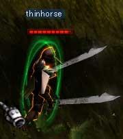 thinhorseさん